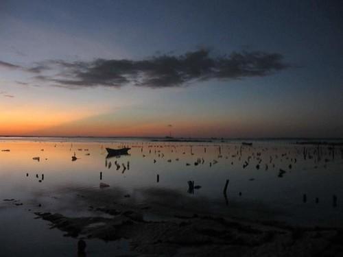 Seaweed plantation in Nemberala beach, Rote island, East Nusa Tenggara