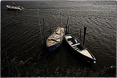... IMG_8516 (*melkor*) Tags: art abandoned water landscape geotagged canal spring waves colours lagoon minimal abandon mooring rowboat conceptual melkor vallidicomacchio trashbit motorraft analmostabandonedmooring walkingonalagoonscanalproject comacchioslagoon tworowboatsandamotorraft
