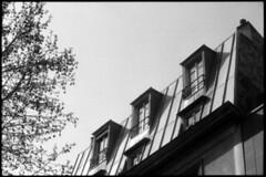 roofs • coulée verte, paris • 2010 (lem's) Tags: old paris bessa roofs coulee parisian verte toits