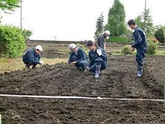 100512 農作業2