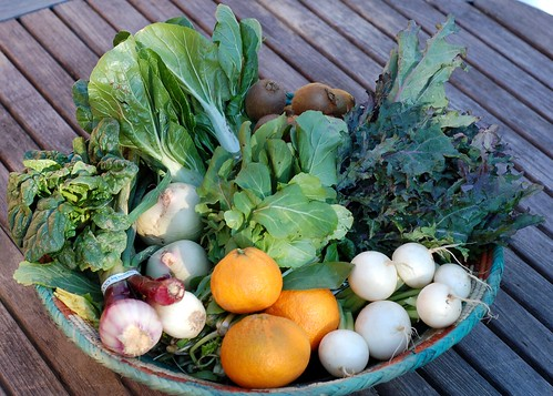 Winter Produce Box