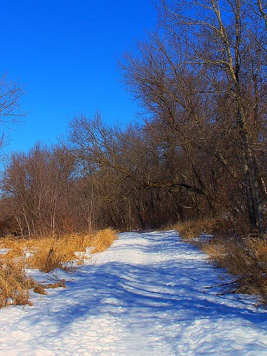 winter 09 016