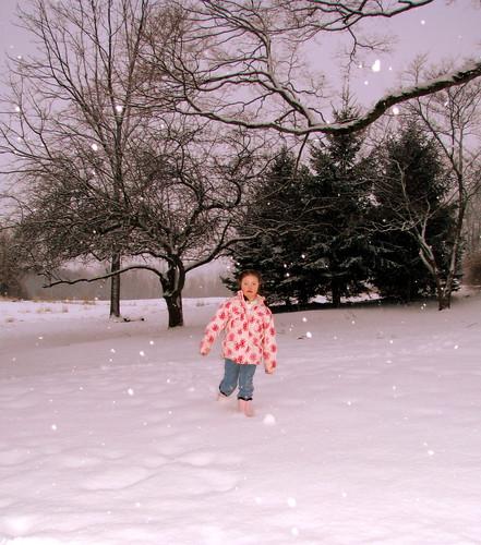 February 1 2009 050