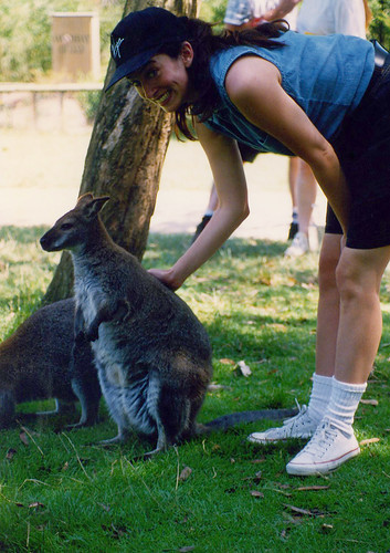 me and the wallaby