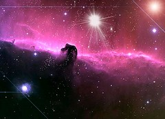 The_Horsehead_Nebula_