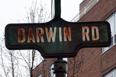Darwin Road, Toronto
