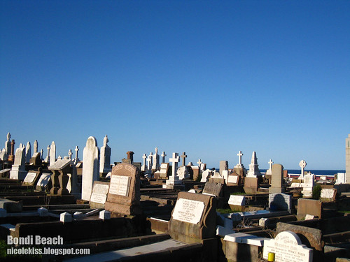 bondi beach graveyard wallpaper