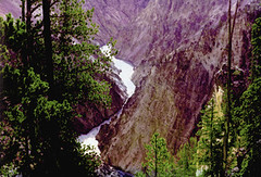 view of the decayed rholite of the Grand Canyon of the Yellowstone River (paul_seabug) Tags: nationalpark canyon yellowstonenationalpark gorge yellowstone wyoming rhyolite yellowstoneriver geomorphology landform yellowstonepark restoredphotograph photographicrestoration
