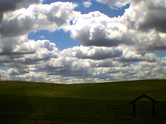 palouse lo-fi (Tyson of Habein Studio) Tags: blue portrait sky green field clouds spring spokane 5 south country lofi waterproof palouse tysonhabein spokanewedding spokaneportrait spokanecommercial httpwwwyellowhousephotocom httpwwwtwittercomtysonhabein httpwwwfacebookcomtysonhabein