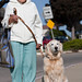 Mary Haworth (mother of Linda Tanner ) of Los Osos, CA, and her lovely dog Sadie.  Dog show in Morro Bay, 10 May 2009.  Best of Bay Pooch Pageant