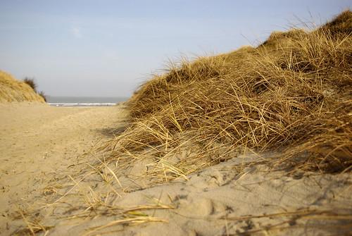 Norderney - Weiße Düne