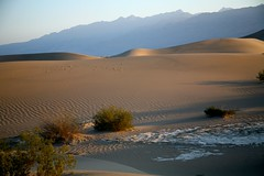 Death Valley National Park-421