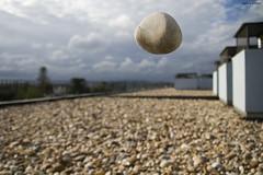 Its just a stone (Agata Areias) Tags: sky stone ufo ceu ovni canoneos400d canon400d
