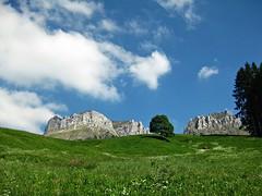 Lonely Tree (AincaArt) Tags: sky cloud mountain tree berg switzerland meadow wiese himmel wolke baum berneroberland berneseoberland canonixus80is aincaart