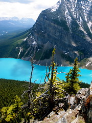 lake louise (*Andrea B) Tags: park blue trees summer lake canada mountains colour tree june rock rockies spring view hiking rocky lookout hike mount louise national alberta banff rockymountains lakelouise beehive 2009 fairview banffnationalpark egren