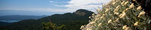 Mt. Quimper crop