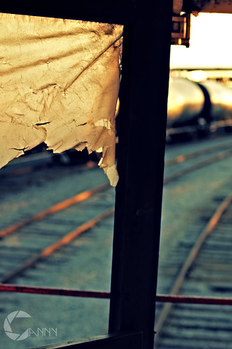 Traincars_Back_Door