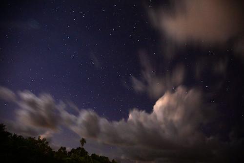 IMG_3120-w Night