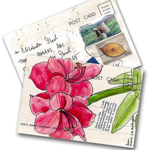 A surprise postcard