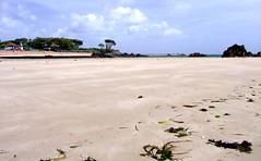 The Beach at Green Island