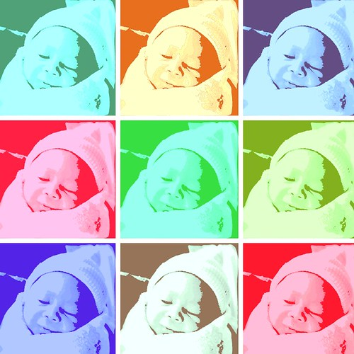 jayan warholized