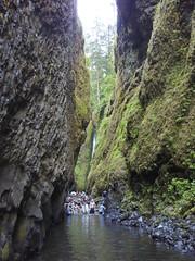 wading oneonta gorge