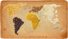 Harvest for the World (ishmael78) Tags: world food coffee corn rice wheat grain eat mais 111 agriculture mappa cereals 2009 cibo millet caffe riso grano mondo d60 cereali miglio explored pearlbarley granoturco isleybrothers planisfero tantophotoshop orzoperlato