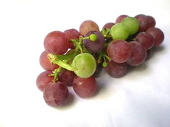 Resveratrol in grapes