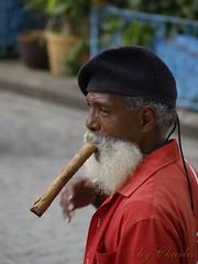 http://yotoy.sytes.net/cuba (Reportaje a mi Habana) (cafecubain) Tags: cuba modelos olympus e300 tabaco lahabana habaneros habanavieja habaneras cafecubain puroshabanos modeloscubanos