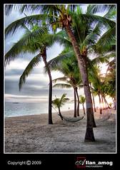 Peace and Serenity (allan_amog) Tags: trees sunset sea beach allan sand coconut amog allanamog allanronaldamog