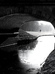 Walking in the light (Bee Nee) Tags: bridge bremen bürgerpark beenee walkinginthelight