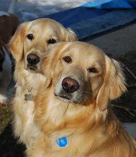 Sadie and Grace