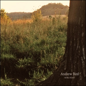 Music Review Andrew Bird