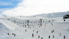 can we have some fun? (Fotis ...) Tags: people snow ski fun parnassos faketilt fauxtilt topofthemountain miniaturelike