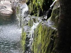 La fuente (juannypg) Tags: patagonia musgo verde water argentina rock agua rocas montaas piedras cascadas humedad sancarlosdebariloche ronegro cascadaloscantaros