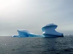 (pijus) Tags: sea snow cold ice mar loneliness south nieve fred soledad fro continent far lejos hielo icebergs southpole antarctic continente professormolchanov antarcticpeninsula polosur antarcticislands antrtida whitecontinent polsud