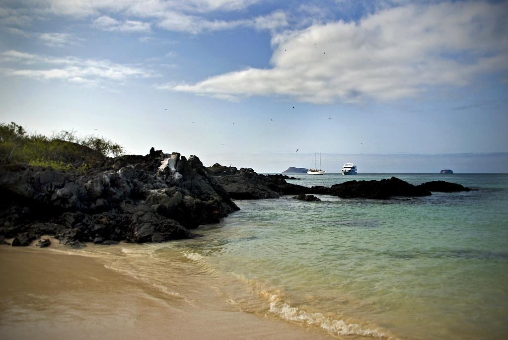 Galapagos, rocky shore