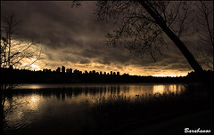 heavy sunset (Miss Barabanov) Tags: trees sunset lake canada nature water nikon bc britishcolumbia natureza burnaby olympics heavy metrotown canad 2010 deerlake d80 vosplusbellesphotos