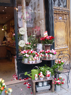 Vignette in Paris, Marais district