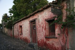 Colonia del Sacramento (chris.bryant) Tags: street trees houses windows signs southamerica fauna uruguay casa flora doors stones cobblestones step colonia decayed portals doorways wmp sudame