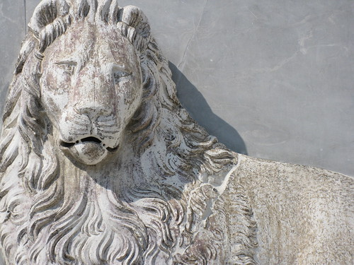 Venecia (otro león)
