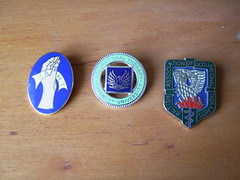 Occupational Therapy Badges