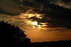 12.06.09 (gareth.barlow) Tags: sunset england orange cloud sun tree yellow skyline clouds contrast dark shine d70 yorkshire rays treeline altostratus bulmer nikno cirrius
