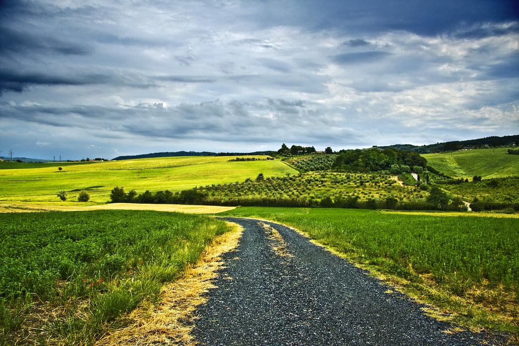 A road in Maremma #1