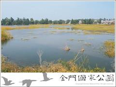 陵水湖(冬景)
