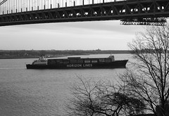 HORIZON PRODUCER in New York, USA. 2009 (Tom Turner - SeaTeamImages / AirTeamImages) Tags: city nyc bridge trees usa newyork classic water lines brooklyn port vintage island bay coast harbor boat marine ship unitedstates harbour horizon transport shoreline vessel spot cargo container pony sho
