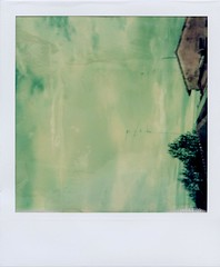 The sky's gone out [polaroid week spring 2010 / day one] (ale2000) Tags: city trees houses roof sky urban white verde green alberi clouds buildings square geotagged polaroid sx70 florence nuvole tetti case cielo vista instant firenze sight frommywindow bianco antenne 1000 antennas citt impossible palazzi nubi fadetoblack supercolor supercolor1000 istantanea roidweek fade2black thepossibleexhibition geo:lat=43788436 geo:lon=11254251
