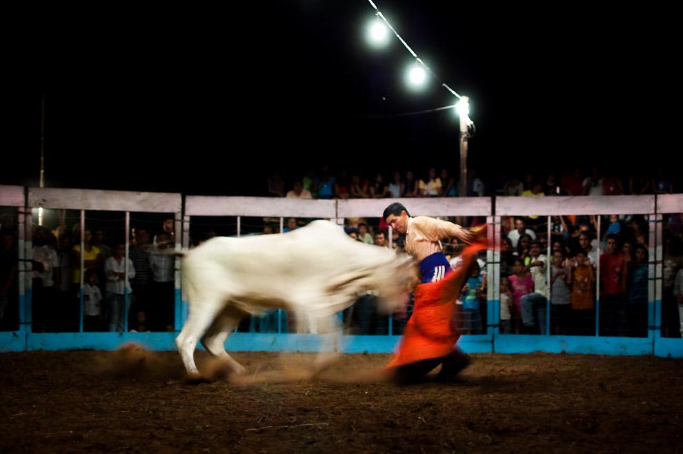 """El torero realiza una faena a capote con el primer ejemplar de la noche, la técnica de la faena particularmente se llama """"Verónica"""" que puede ser adoptada de diferentes formas originales dependiendo de la astucia del torero. (15 de Agosto, Paraguay - Elton Núñez)"""