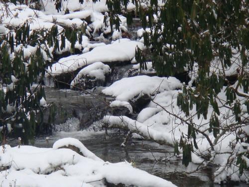 little-horse-creek