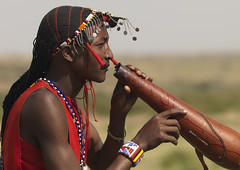Maasai drinking cow blood - Kenya (Eric Lafforgue) Tags: africa haircut man cow beads blood drink kenya profile culture tribal hasselblad tribes warrior afrika tradition massai tribe ethnic hairstyle sang maasai tribo homme vache headdress afrique headwear ethnology headgear tribu hairdress qunia lafforgue ethnie 0893  qunia    kea massais   a maassais